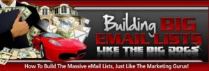 Building Big Email Lists